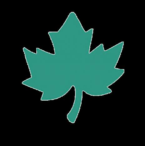Punch – Maple Leaf 1,6cm